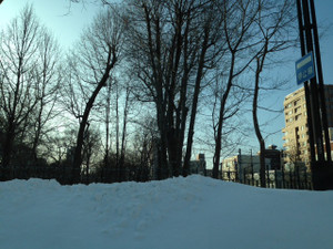 Sapporo_140204_5_snow
