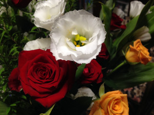 Recital150912_flower2