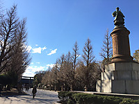 Tokyo170213_7943