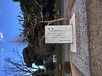 Tokyo170213_7970